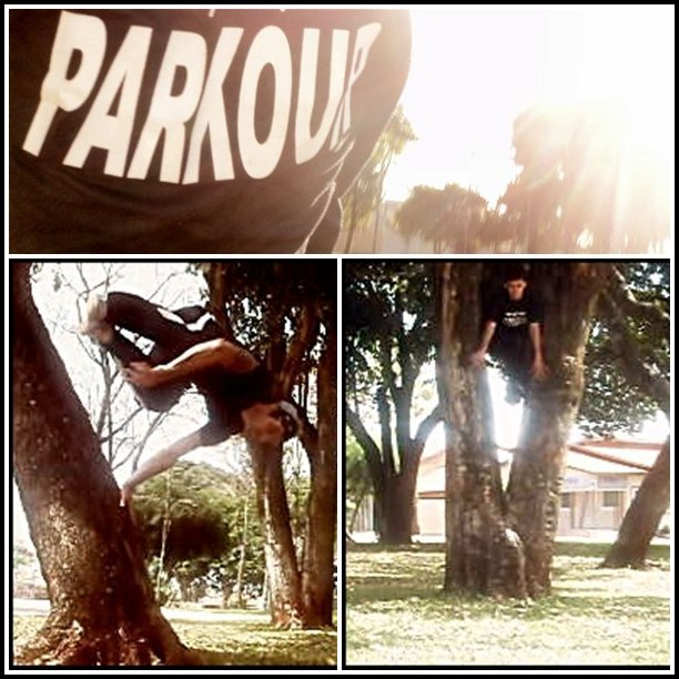 3� WORKSHOP Procopense de Parkour